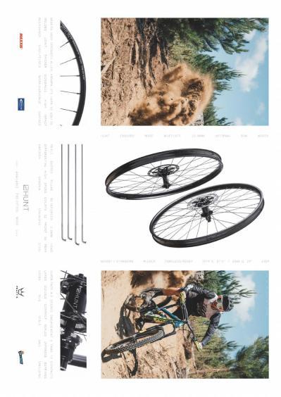 Mountain Bike Rider  Summer (2019)