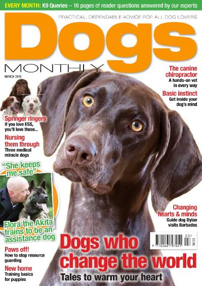 Dogs Monthly   March 2016 vk com magazines ebooks