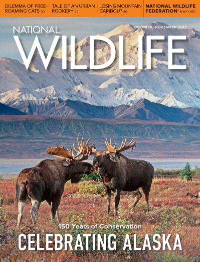 National Wildlife  OctoberNovember (2017)