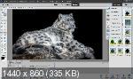 Adobe Photoshop Elements 2020 18.0.0.259