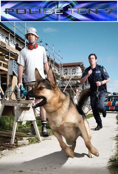 Police Ten 7 S26E27 HDTV x264-FiHTV[TGx]