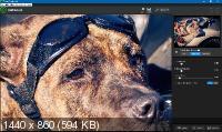 Topaz Photoshop Plugins Bundle 09.2019 + Portable