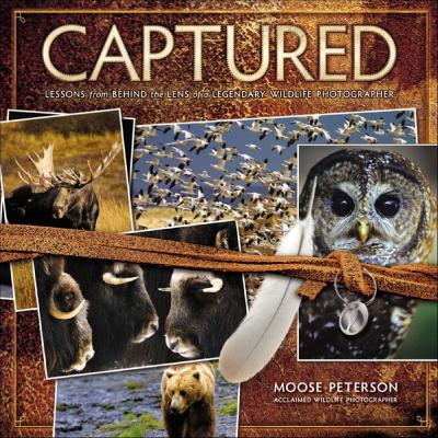 Captured Lessons from Behind the Lens of a Legendary Wildlife Photographer