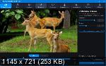 Movavi Video Converter 20.0.0 Premium